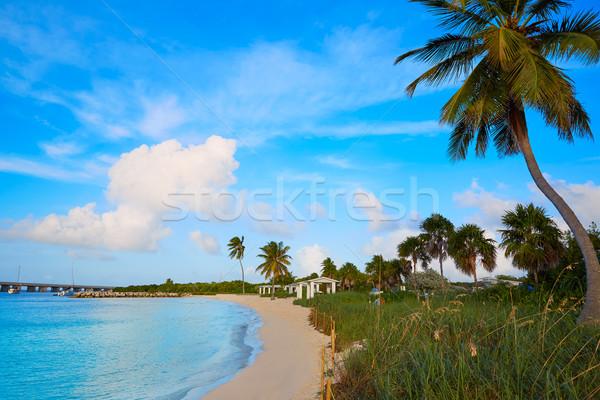Florida kulcsok tengerpart park USA égbolt Stock fotó © lunamarina