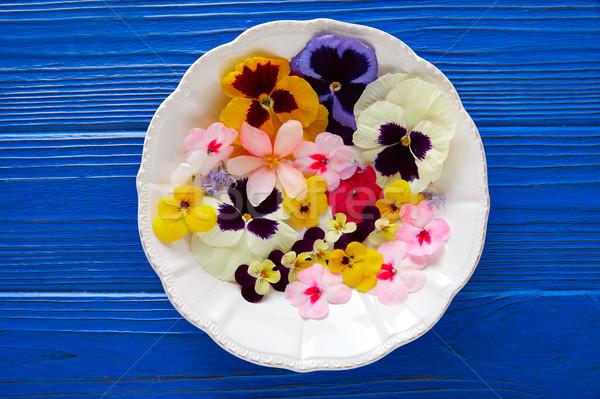 Ehető virágok saláta tányér kék fa asztal Stock fotó © lunamarina