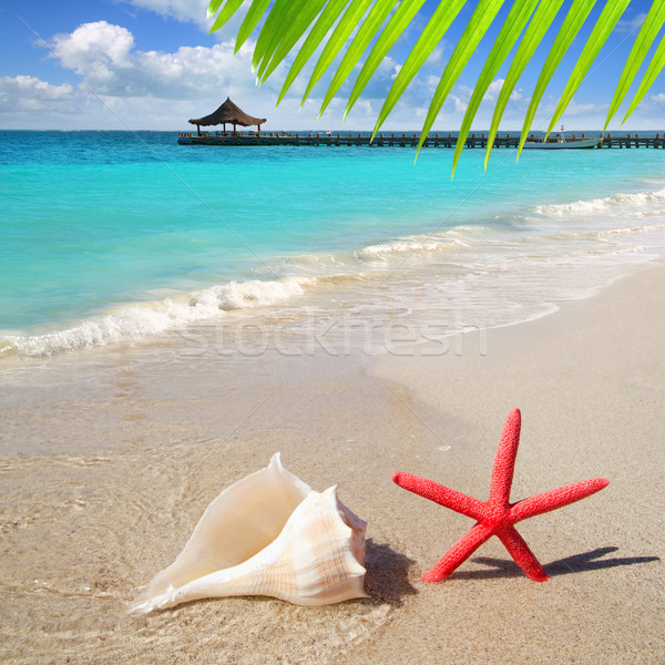 Plage starfish sable blanc tropicales hutte Photo stock © lunamarina