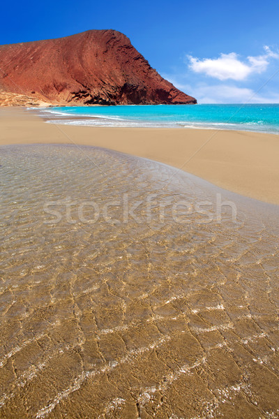 Beach Playa de la Tejita in Tenerife Stock photo © lunamarina