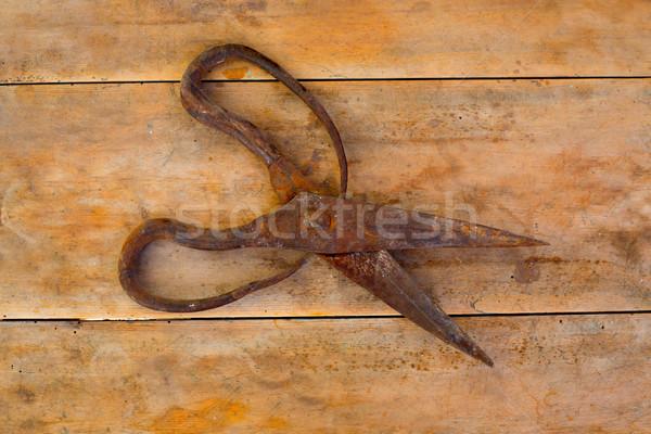 Antique sheep wool shears scissors rusted Stock photo © lunamarina