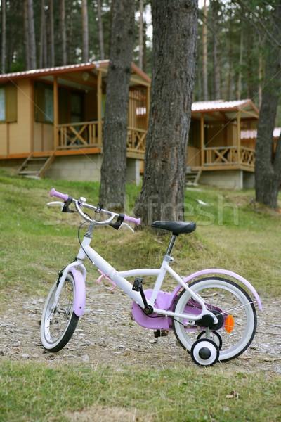 Children pink bicycle in wooden cabin mountain Stock photo © lunamarina
