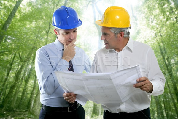 Stock foto: Ingenieur · Architekt · zwei · Sachverstand · Team · Plan