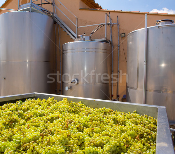 Vinificação uvas fermentação aço inoxidável vinho fábrica Foto stock © lunamarina