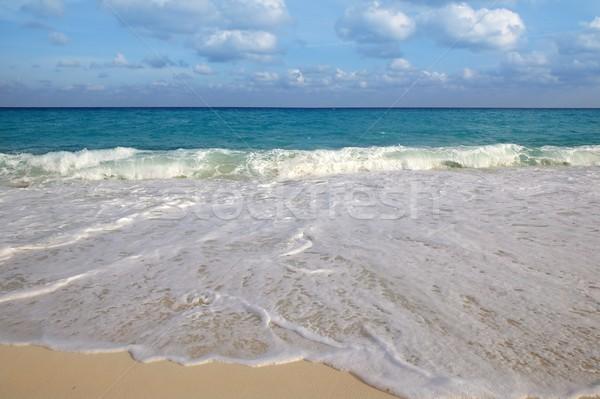 Karib tenger trópusi türkiz tengerpart kék Stock fotó © lunamarina