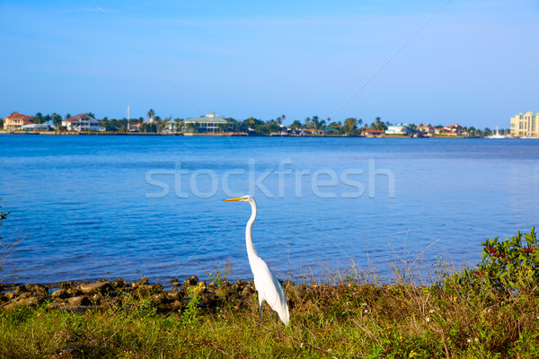 Naples Florida Marco Island view Florida US Stock photo © lunamarina