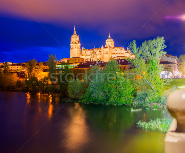 Salamanca skyline sunset in Tormes river Spain Stock photo © lunamarina