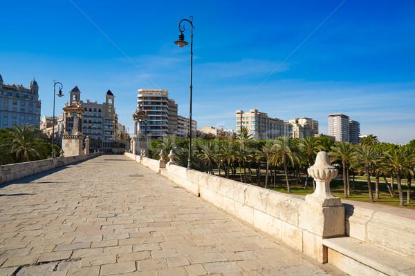 Valencia Puente pont del Mar bridge Spain Stock photo © lunamarina