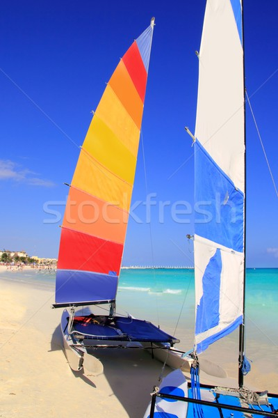 Hobie Cat Mayan Riviera Playa del Carmen mexico Stock photo © lunamarina