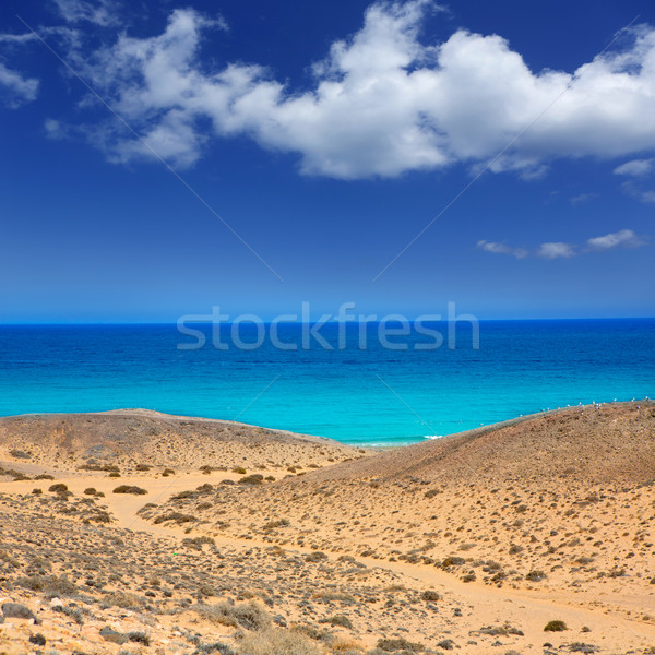 Lanzarote south Punta Papagayo sea in Canaries Stock photo © lunamarina