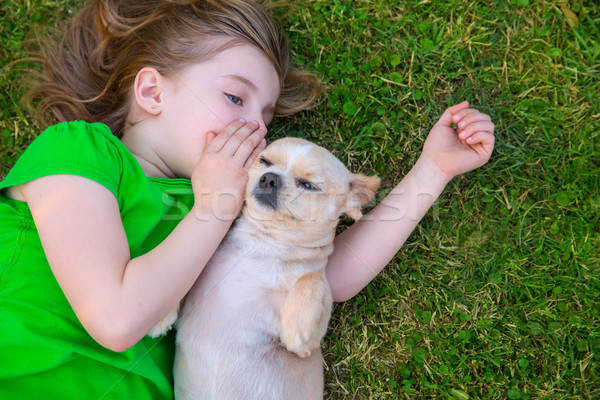 Blond happy girl with her chihuahua doggy portrait Stock photo © lunamarina