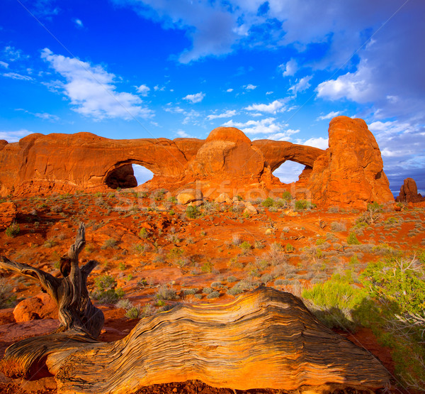 Stockfoto: Park · Utah · USA · Windows · hemel