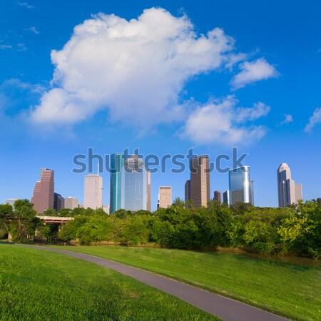 スカイライン 公園 テキサス州 空 市 通り ストックフォト © lunamarina