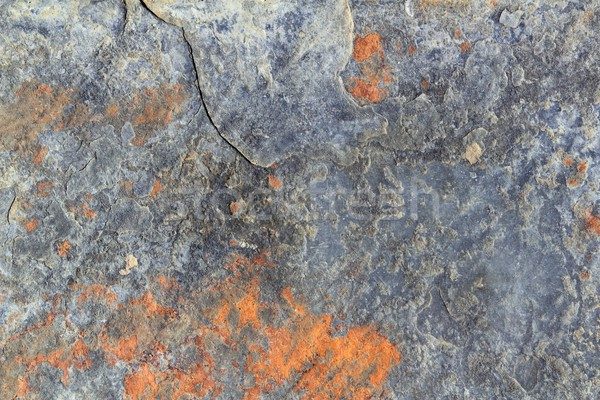 slate stone gray ruety color texture background Stock photo © lunamarina