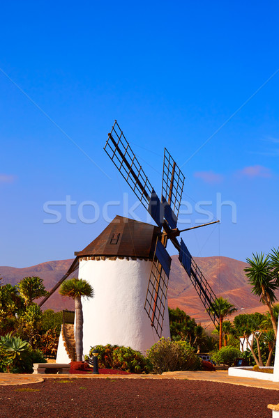 Antigua Windmill Fuerteventura at Canary Islands Stock photo © lunamarina