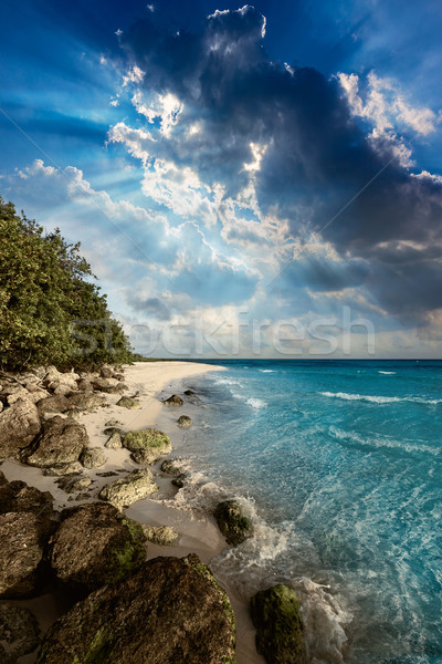 Florida Keys beach Bahia Honda Park US Stock photo © lunamarina