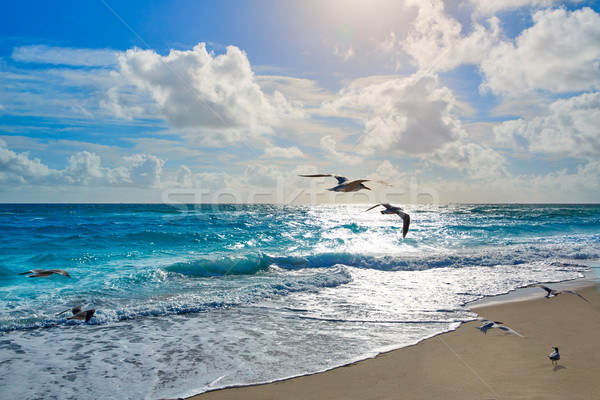 Singer Island beach at Palm Beach Florida US Stock photo © lunamarina