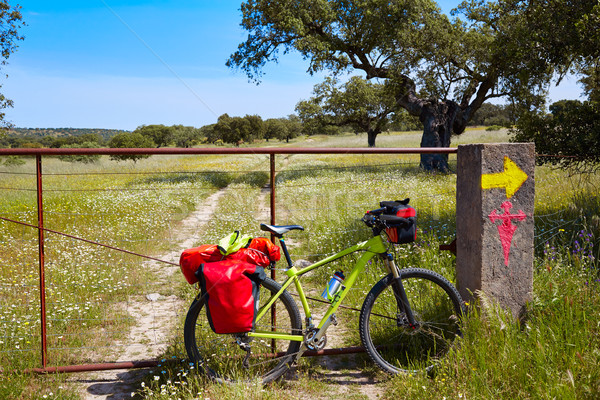 Via de la Plata way to Santiago by bike Spain Stock photo © lunamarina