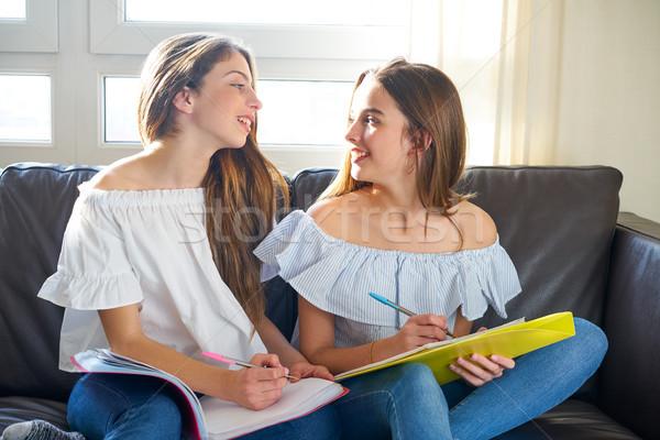 Foto stock: Melhor · amigo · meninas · estudar · lição · de · casa · casa · sofá