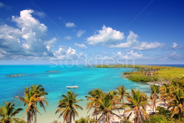 aerial view Contoy tropical caribbean island Mexico Stock photo © lunamarina
