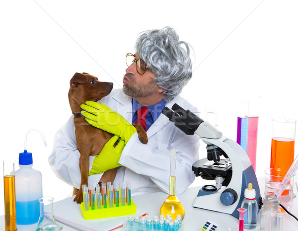 Stock photo: Crazy nerd scientist silly veterinary man with dog at lab
