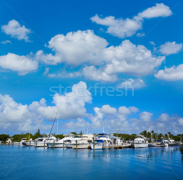 Kulcs nyugat Florida marina USA tengerpart Stock fotó © lunamarina