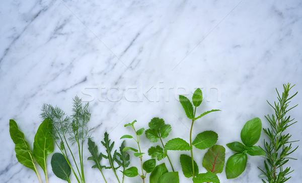 Gasztronómiai gyógynövények rozmaring édeskömény oregano menta Stock fotó © lunamarina