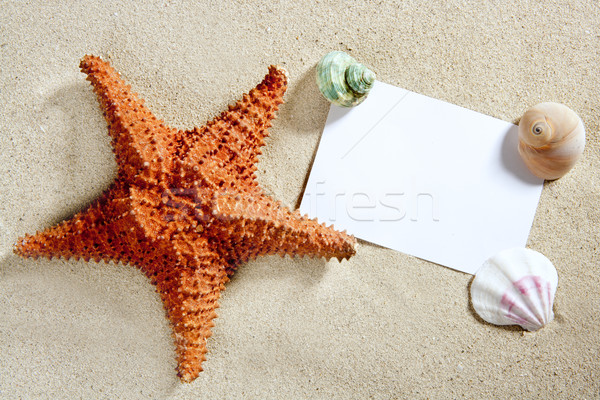Stock photo: blank paper beach sand starfish shells summer