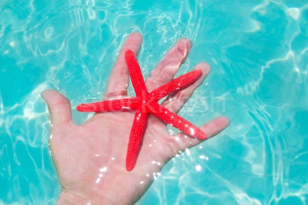 Rood zeester menselijke hand turkoois tropisch strand Stockfoto © lunamarina