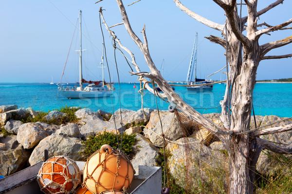 Aqua mediterranean in formentera with sailboats Stock photo © lunamarina