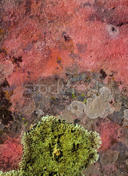 Groene Rood rock textuur natuur achtergronden Stockfoto © lunamarina