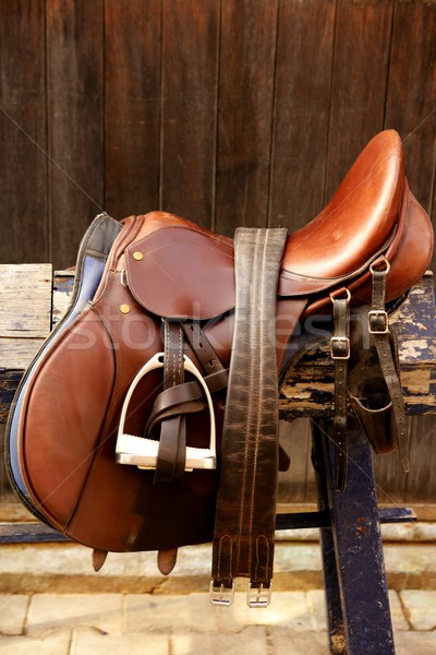 Horse riders complements, rigs, mounts, leather over wood Stock photo © lunamarina