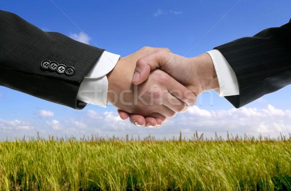 Foto stock: Empresario · socios · apretón · de · manos · naturaleza · trabajo · en · equipo · verde
