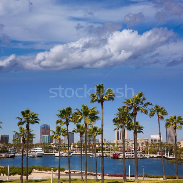 Long Beach California skyline from palm trees of port Stock photo © lunamarina