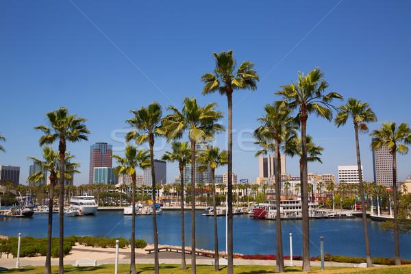 Long beach Kaliforniya ufuk çizgisi palmiye ağaçları liman marina Stok fotoğraf © lunamarina