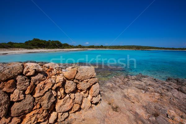 Menorca Son Saura beach in Ciutadella turquoise Balearic Stock photo © lunamarina