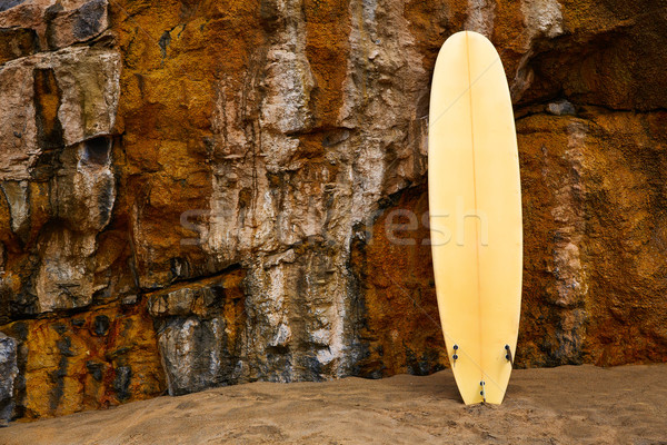 Fuerteventura La Pared beach surfboard Stock photo © lunamarina
