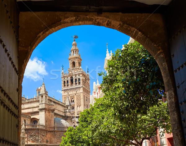 Seville cathedral Giralda tower from Alcazar Stock photo © lunamarina