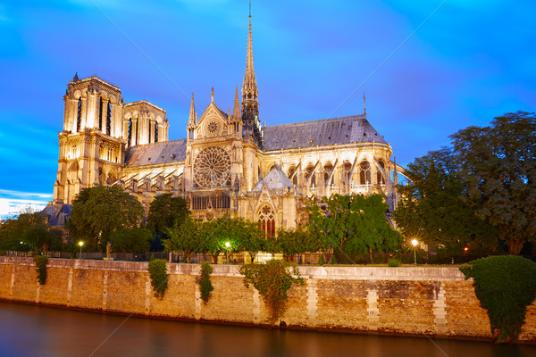 Notre Dame cathedral sunset in Paris France Stock photo © lunamarina