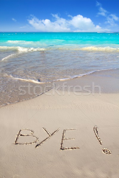 Bye spell written in beach sand tropical Caribbean Stock photo © lunamarina