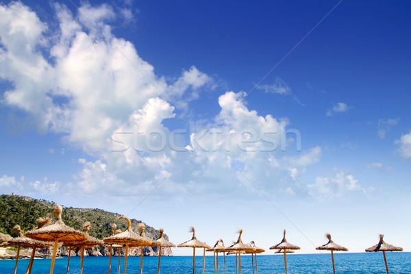 Camp de Mar in Andratx from Mallorca balearic island Stock photo © lunamarina