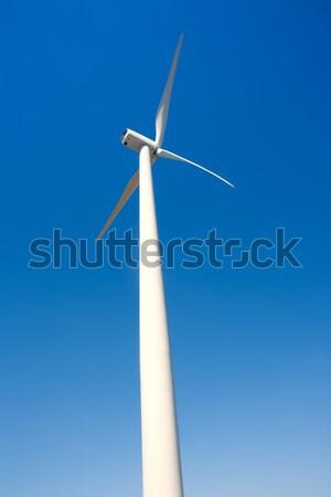 Stockfoto: Windmolen · blauwe · hemel · perspectief · hemel · natuur · landschap