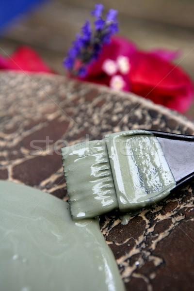 Mud, green clay natural therapy for skin mask  Stock photo © lunamarina