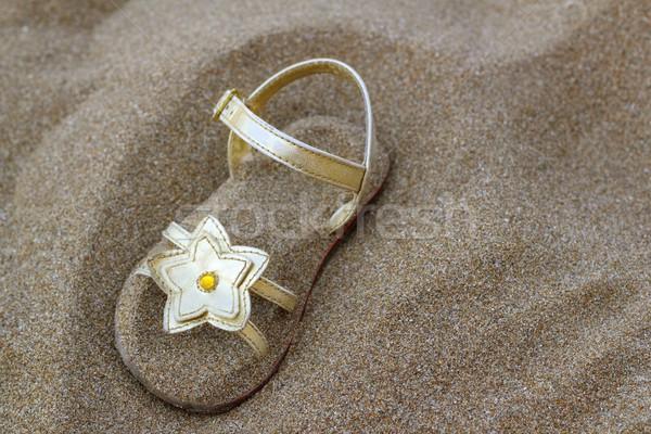 Dorado estrellas enterrado verano arena de la playa vacaciones Foto stock © lunamarina