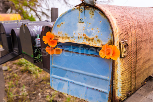 California poppy grunge mailboxes along Pacific Highway Route 1 Stock photo © lunamarina