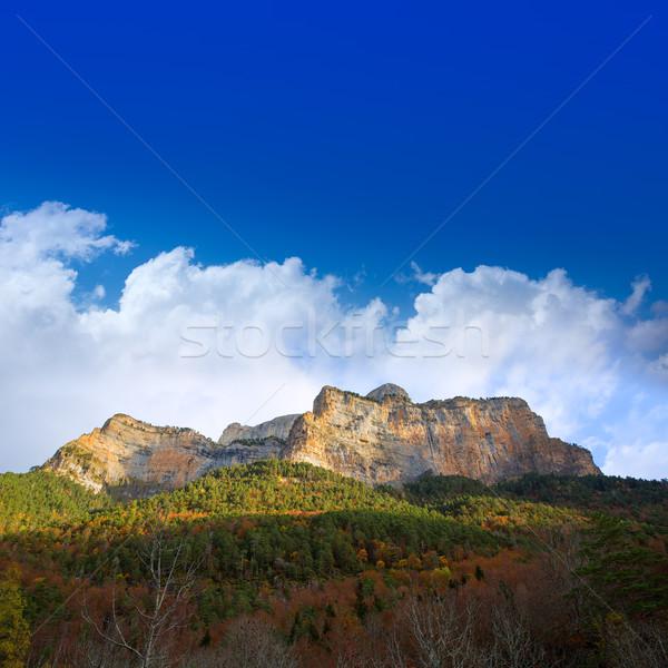 Mayonesa valle naturaleza paisaje montana verde Foto stock © lunamarina