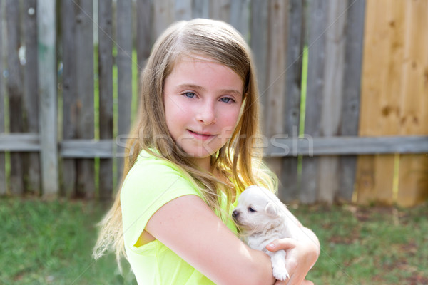 Blond kid girl with puppy pet chihuahua playing Stock photo © lunamarina