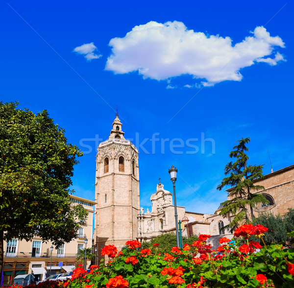 Valencia Cathedral and Miguelete tower Micalet Stock photo © lunamarina
