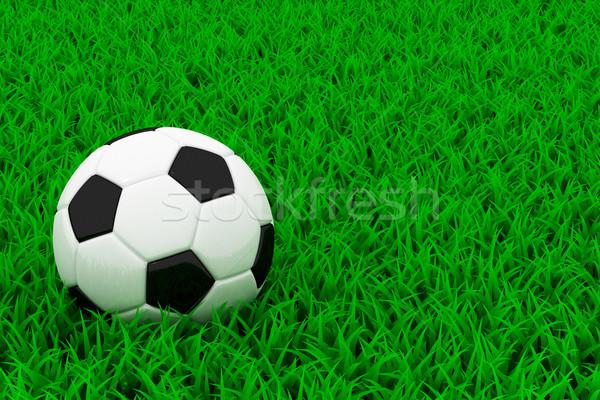 Voetbal zwart wit groen gras voetbal sport bal Stockfoto © Lupen