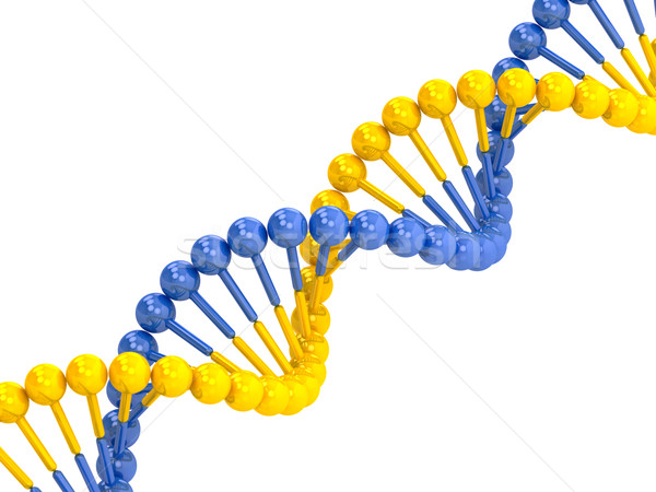 yellow blue DNA molecule Stock photo © Lupen